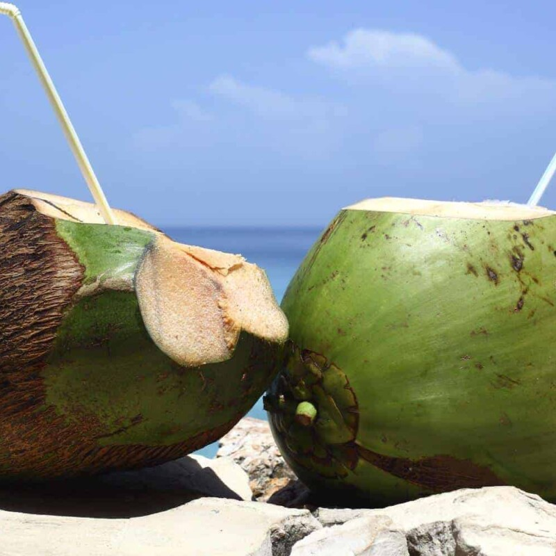 Stay Hydrated While Travelling | Gem Lowes Travel Blog