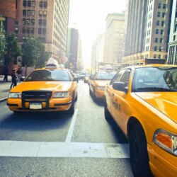 What can you do in New York for free